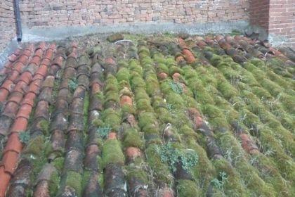 manutenzione pulizia tetto provincia mantova